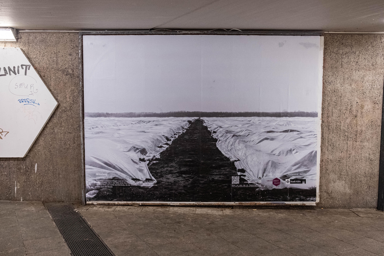 Andreas Lemke | Jan 2021